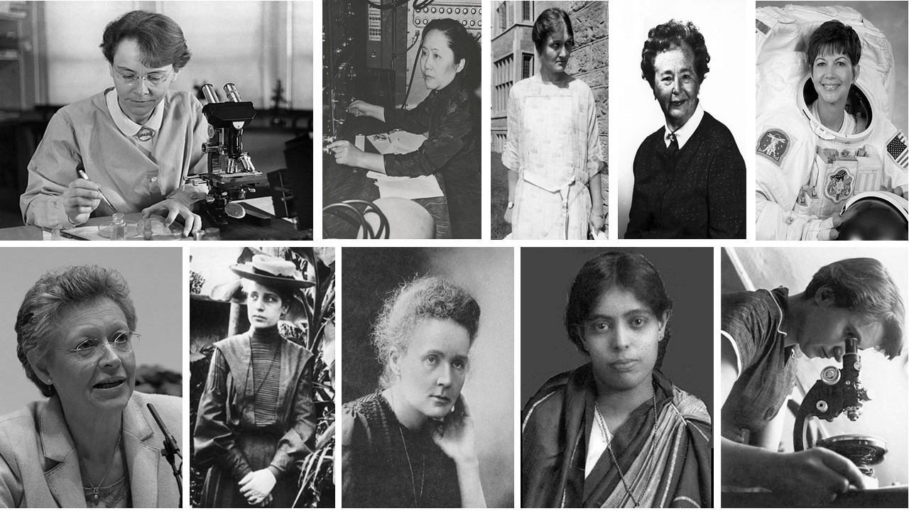 Portraits of successful women in science